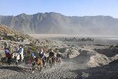 Mount Bromo Volcano Horseback Tour