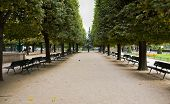 Notre Dame Cathedral Gardens