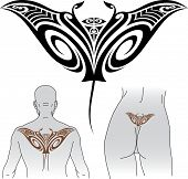 Maori styled tattoo pattern in shape of manta ray. Fit for upper and lower back. Raster image. Find