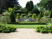 Topiary. Garden Design/ Art