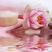 Spa with water lily