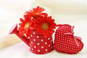 Red gerber flowers in red watering can