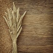 pic of fall-wheat  - Wheat on the wood background - JPG