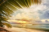 stock photo of west indies  - Sunset at caribbean sea beach - JPG