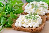 Sandwiches With Curd Cheese