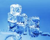 pic of ice cube  - melting ice cubes - JPG
