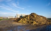 stock photo of mud pack  - Cow manure on large pile on farmland