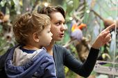 image of adults only  - Mom and her son in a zoological museum - JPG
