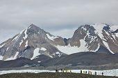 Svalbard, Norway - July 2013: Hiking in Hornsund, Svalbard