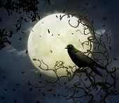 The crow and the moon. Elements of this image furnished by NASA