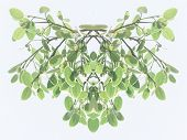 Symmetrical decorative foliate pattern of fresh green leaves on hanging branches with a faded toned