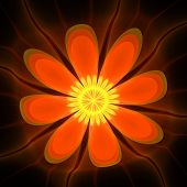 Orange-yellow translucent fractal flower on the black background