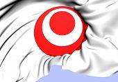 Symbol Of Okinawa Prefecture