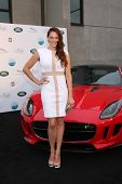 LOS ANGELES - APR 25:  Amanda Righetti at the 2014 LA Modernism Show Opening Night at 3Lab on April