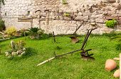 image of horse plowing  - Plow and old gardening tools in a green meadow - JPG
