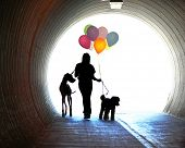 a girl at the end of a tunnel holding balloons and two dogs