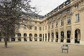 garden of the Palais Royal (royal palace) in winter, left angle (Paris France)