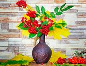pic of rowan berry  - Autumn yellow leaves and bright red berries in a ceramic jug - JPG