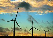 Black Silhouettes Of Wind Turbines
