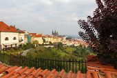 View Of Prague Castle From Petrin Hill.