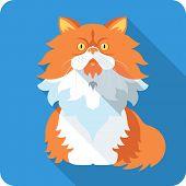 Vector Persian Cat Icon Flat Design