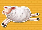 Illustration of a close up sheep running