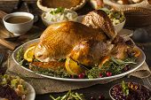 stock photo of poultry  - Whole Homemade Thanksgiving Turkey with All the Sides