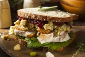 picture of thanksgiving  - Homemade Leftover Thanksgiving Dinner Turkey Sandwich with Cranberries and Stuffing - JPG