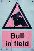 Warning Sign Of Bull In The Field, Color Filter Applied