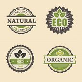 natural eco design elements set