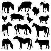 Silhouettes Of Farm Animals