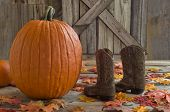 pumpkin on the porch with cowboy boots