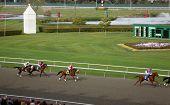 Horse Racing At Golden Gate Fields