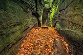 Hidden Passageway