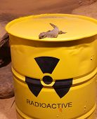 stock photo of radium  - Lizard on a barrel of radioactive waste - JPG
