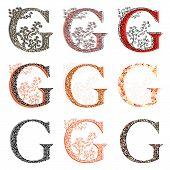 Various Combination Fishnet Letter G.