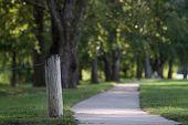 Long summer path