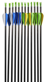 picture of fletching  - Set of black arrows in carbon with blue green yellow and white fletching isolated on white background - JPG