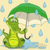 Crocodile With Umbrella