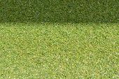 image of grass area  - green grass with empty area for text background - JPG