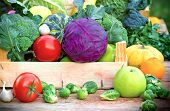 pic of crate  - Healthy organic vegetables in crate on table - JPG