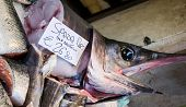 picture of swordfish  - Fresh swordfish at a market in Venice Italy - JPG