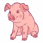 foto of piglet  - Funny vector cartoon piglet isolated background - JPG