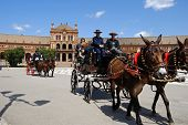 Horse drawn carriages, Seville.