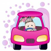 Donkey Girl In A Car
