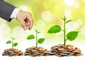 picture of golden coin  - Hand of a businessman giving coins to a tree growing on golden coins - JPG