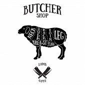 pic of lamb shanks  - Butcher cuts scheme of lamb - JPG