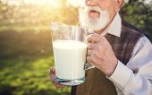 pic of jug  - Senior farmer with milk in a glass jug outside in green nature - JPG