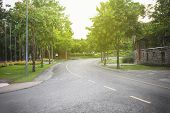 stock photo of tree lined street  - Empty curved road with natural trees  - JPG