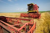 picture of combine  - Two combine harvesters standing parked in barley field during summer harvest - JPG